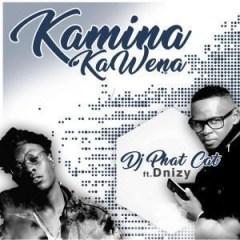 DJ Phat Cat - Kamina Kawena (ft. Dnizy)